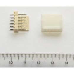 Conector recto polarizado (6-pin)