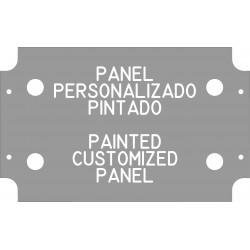 Panel transparente pintado (espesor 2 mm)